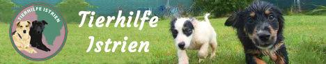 Tierhilfe Istrien - Verein der Tierfreunde - seriöser Tierschutz