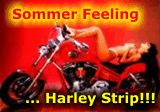 harley strip