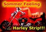 harley strip
